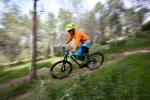 מבחן אופניים corratec 10Hz. מתלה אחורי עם אופניים. שילוב של משולש אחורי צף ואלסטומר המצטרף לבולם הזעזועים. התוצאה מעניינת מאד. צילום: תומר פדר