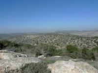 מסלול שטח פארק עדולם. מחלונה של טויטה ראב 4 2011 ניבטת חוות צוק צילום פז בר