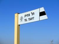 טיול שטח עם יונדאי IX35. אוכלים ובולסים בין צפרירים לתל צפית - אספרגוסים בין שפלת יהודה לשפלה. צילום: רוני נאק