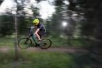 מבחן אופניים Bergamont Revox 3.0. הברקות בתחום השלדה, המעצורים והאיבזור ההיקפי הופכים את האופניים הבסיסיים האלו לחדווה אמיתית. המחיר פחות מ-3,000 שקלים. צילום: תומר פדר