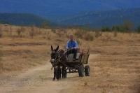 ראלי ברסלאו בולגריה - הקיטוב בין המרצדסים הנוצצים על הכביש לבין עגלות המשא צורם לעין. קומוניזם עדיין מתמשיך להתפורר בבולגריה. צילום: רמי גלבוע