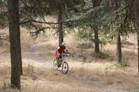 מבחן אופני הרים, קנונדייל ג\'אקיל 2012. היכולת של אופני ההרים האלו לשנות אופי מדהימה. הם מזמינים לתקוף סינגלים באגרסיביות ויגרמו לך לראות גיבור. צילום: פז בר