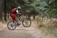 מבחן אופני הרים, קנונדייל ג\'אקיל 2012. חלוקת המשקל מאפשרת הנפת גלגל קלילה מעל כל מכשול. אפילו 4X4 צילום: פז בר