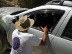 לומדים את השטח עם דאצ'יה דאסטר. שלחנו את נועה עפרוני לצלול למים העמוקים של נהיגת השטח בהר חורשן ובחולות. צילום: ניר בן זקן