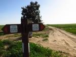 טיול שטח עם מיצובישי אאוטלנדר לחולות עגור, מצפה גבולות ופארק אשכול. תגליות בנגב המערבי. צילום: רוני נאק