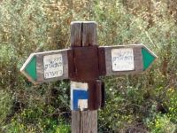 טיול שטח עם יונדאי סנטה פה. מגלעד ליוגב, חמדות רמת מנשה, דרך משמר העמק, הקישון שדות עמק יזרעאל ליוגב. צילום: רוני נאק