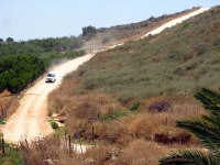 מבחן רכב מרצדס GLK. על השביל בין המטעים - בקצב מתון ועל שביל מסודר כמו זה ה-GLK ממש נעים. צילום: רוני נאק