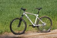 מבחן אופניים GT Avalanche 4.0. שלדת triple triangle  המזוהה עם המותג - מראה קלאסי פחות מעצורי דיסק. צילום: פז בר