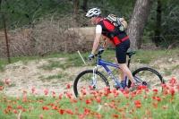 מבחן אופניים GT KARAKORAM. תנוחת הרכיבה שמה אותך ממש במרכז האופניים עם חלוקת משקל מאוזנת. צילום: פז בר