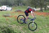 מבחן אופניים GT KARAKORAM. בפאסים הראשונים - לפני כיוון המזלג - המורד המטופש הזה גרם לסגירת מהלך. מאחור: קאדילק ATS! צילום: פז בר
