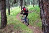 מבחן אופניים GT KARAKORAM. דיווש בישיבה במעלה והמשקל מורגש, החרטום מספיק