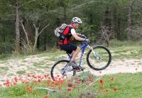 מבחן אופניים GT KARAKORAM. לא פשוט אבל בהחלט בתפריט - להרים גלגל זה תזמון של דיווש ומשיכה - חזקה - בכידון. לא בא טבעי. צילום: פז בר