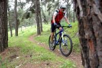 מבחן אופניים GT KARAKORAM. טיסה בין העצים - פסיכולוג לשבוע במחיר עממי. צילום: פז בר
