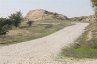 טיול שטח בנחל הבשור. מראה כללי של הדרך הנופי על נחל הבשור. השביל מאפשר תנועה קלה לרכבי פנאי ואופניים. צילום: פז בר