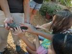 יוצאים לקמפינג עם הילדים? הנה מה שצריך לעשות לפני ובזמן טיול שטח. מפגשים עם בעלי חיים לא תמיד חייב להיות בפינות ליטוף עם ארנבים אובדניים. צילום: רוני נאק