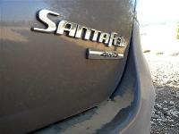 יונדאי סנטה פה 2012 במבחן שטח. רכב הפנאי של יונדאי אשר קובע את התקן בסגמנט הפנאי. צילום: פז בר