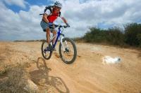 מבחן אופניים אידאל VSR קומפ. עף רחוק ונוחת ברכות. אחרי הסט אפ של האופניים התגלתה יכולת חיננית לספוג נחיתות באדישות - האמת היא שהמתלים עבוד טוב יותר בחבטות גדולות מאשר בסינון חירפוצים קטנים. צילום: פז בר