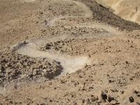 שביל ישראל על אופניים. שביל עקלתוני בשטח עם זוויות מושלמות ויישור קרקע ראוי צילום באדיבות הלל זוסמן