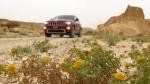 לשטח עם האינדיאנים! הרפתקאה בשטח עם ג'יפ גרנד צ'ירוקי והילדודס. צילום: רוני נאק