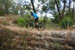 מבחן אופניים KTM AERA PRO. אופני XC מרתון מהירים עם זנב קשיח ושלדת קרבון במחיר של 9,500 שקלים בלבד. צילום: תומר פדר