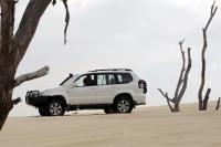 צילום אומנותי של טויוטהלנדקרוזר ועצים