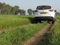 """מבחן דרכים מאזדה CX5. נראה טוב בשטח, על גדות הירדן, מלכך עשב טרי - צריכת דלק ממוצעת 9.5 ק\""""מ/ל\' במבחן הדרכים למאזדה.  צילום: רוני נאק"""