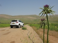 מבחן דרכים מאזדה CX5. מהנה מאד בכביש מפותל, פחות מזה על כביש מהיר. צילום: רוני נאק