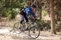 מבחן אופניים מרידה ביג 7 2014. יכולת טובה להתגלגל על מכשולים כמו זה. צילום: פז בר