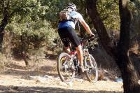 מבחן אופניים מרידה 140 XT. בין עצים ובין סלעים - פני שטח לא אחידים, אבנים שתולות, חריצים ושורשים יזללו ברעב על-ידי אופני הרים בעלי משרעת יכולת רחבה. צילום: פז בר