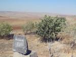 טיול שטח עם יונדאי לדרך נוף גבעת המורה. מחפשים עדרי צבאים, בין ציטוטי שירים ומוצאים חצבים עם IX35. צילום: רוני נאק