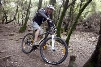 """נורקו צ\'ארג\'ר 9.1. בין האלונים והקטלבים של המירון. סלעים רטובים, עלים חלקלקים ו-14 ק\""""ג של אופניים הניבו גם חיוכים רחביםצילום: פז בר"""