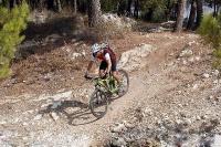מבחן אופניים נורקו ריבולבר 2. נטועים ונוסכי בטחון. לצלול במורד תלול בידיעה שיש מתלים וגלגלים שיכולים לזלול כמעט כל דבר. צילום: פז בר