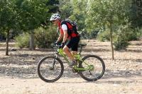 מבחן אופניים נורקו ריבולבר 2. שביל פתוח זו נקודת החוזקה שלהם. מהירים מאד, בספרינטים וכשתגיעו לקצב שיוט מהיר הם יישארו בו בקלות מפתיעה. צילום: פז בר