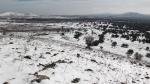 """עם מיצובישי פאג'רו קצר להר אודם ולשלג שעליו. עם מבנה איתן, ומערכת הנעה מרשימה מאד - יכולנו להעפיל לראש הר אודם גם עם כ-10 ס""""מ שלג, בוץ, סלעים ומים זורמים על סלעי הבזלת. צילום: רוני נאק"""