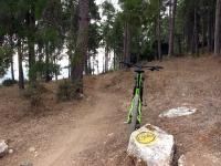 סינגל ריש לקיש. 23 קילומטרים של רכיבת אופניים מענגת בין חורש טבעי, יערות אורנים, היסטוריה ואפילו עצי חרוב עמוסי פרי. צילום: רוני נאק