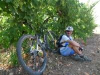 אופני סגל במבחן שטח. גאווה ישראלית! יין בוטיק, בירה בוטיק ועכשיו אופני בוטיק! הללויה צילום: פז בר