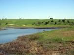 טיול שטח עם יונדאי על דרך השקמה על שם אריאל שרון. נופי שדות פתוחים, תל נגילה, בתרונות רוחמה ושמורת פורה. צילום: רוני נאק
