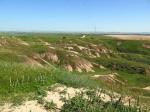טיול שטח עם יונדאי על דרך השקמה על שם אריאל שרון. בין הבתרונות, נופי שדות פתוחים, תל נגילה, בתרונות רוחמה ושמורת פורה. צילום: רוני נאק