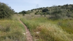טיול אופניים סינגל זכריה ועמק האלה. על אופני הרים לסינגל זכריה. צילום: רוני נאק