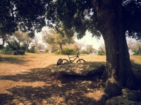 טיול אופניים לסינגלים של אהוד. בין עמיקם להר חורשן, שבילי 4X4 סינגלים מוצלים ומים שקופים. סתחת עץ האלון. צילום: רוני נאק