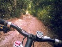"""טיול אופניים לסינגלים של אהוד. בין עמיקם להר חורשן, שבילי 4X4 סינגלים מוצלים ומים שקופים. בשביל \""""גן העדן\"""". צילום: רוני נאק"""