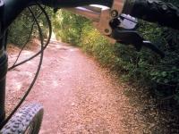 """טיול אופניים לסינגלים של אהוד. בין עמיקם להר חורשן, שבילי 4X4 סינגלים מוצלים ומים שקופים. בשביל """"גן העדן"""". צילום: רוני נאק"""