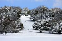 4X4 בשלג. השבילים ושדות המוקשים נעלמים תחת הכיסוי המושלג. העזרו בהדרכה מקומית או בנווט GPS לשטח המסמן את השבילים. צילום: רמי גלבוע