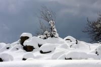 4X4 בשלג. יום לאחר הסערה, השמש תהפוך את ערימות השלג למחזה מרגש ומסעיר; בעוד שעתיים זה כבר יהיה בוץ...צילום: רמי גלבוע