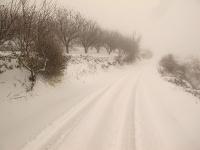4X4 בשלג. גם מבעד למסך השלג, קל לזהות את השביל המוסדר. אל תרדו מהשבילים, זה רע לטבע, ומסוכן עבורכם! צילום: רמי גלבוע