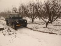 4X4 בשלג. הנה שוב אותו דיפנדר כחול שמתסתתר בין עצי התפוח. צילום: רמי גלבוע