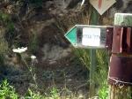 טיול שטח עם יונדאי IX35. ממודיעין, דרך קברי המכבים, נאות קדומים, בקעת הנזירים לבן שמן, ותל גמזו. צילום: רוני נאק