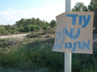 מסלול טיול עם יונדאי לעמק יזרעאל, נחל ציפורי ואלון הגליל. צילום: פז בר