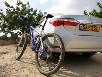 בייקמוביל מבחן רכב טויוטה קורולה החדשה. מראה כללי מאחור. כסו את הסמל ותתקשו לזהות את המקור. צילום: רוני נאק