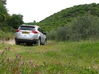 מבחן רכב טויוטה RAV 4. רועה באחו. במבואות החורשן. יכולת השטח נשמרת, צריכת הדלק משופרת, זוויות המרכב מגבילות. צילום: רוני נאק